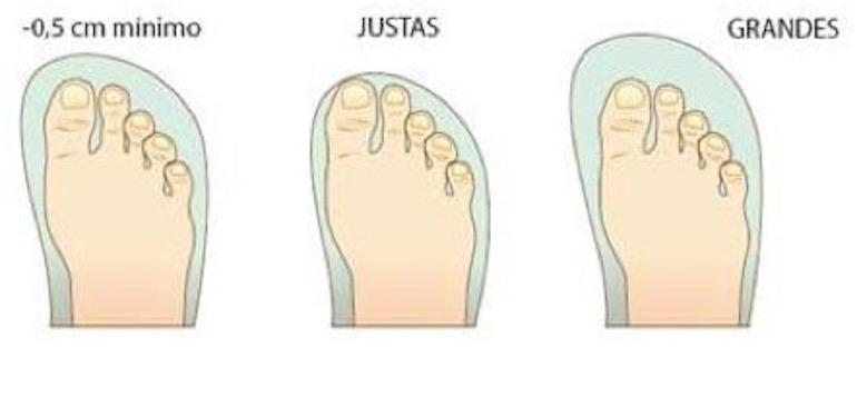01a45c6dd2 Equivalencias de tallas de calzado